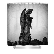 Roscommonn Angel No 4 Shower Curtain