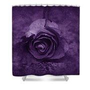 Rose - Purple Shower Curtain