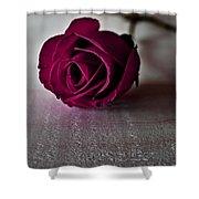 Rose #003 Shower Curtain