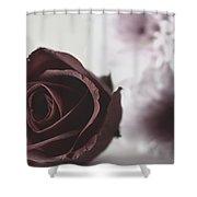 Rose #005 Shower Curtain
