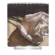 Rose 1 Shower Curtain