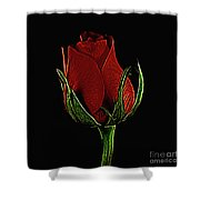 Rose 123 Shower Curtain