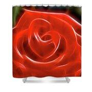Rose-5856-fractal Shower Curtain