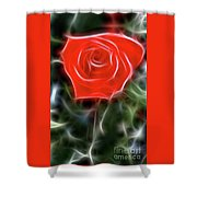 Rose-5879-fractal Shower Curtain