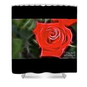 Rose-5890-fractal Shower Curtain