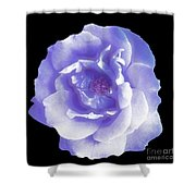 Rose 7 Shower Curtain