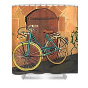 Rose And Bicycle Shower Curtain