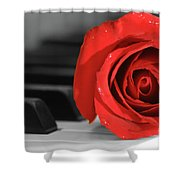 Rose And Piano Shower Curtain