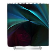 Rose And Satin Shower Curtain