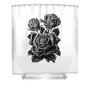 Rose Black Shower Curtain