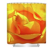Rose Bright Orange Sunny Rose Flower Floral Baslee Troutman Shower Curtain