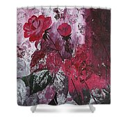 Rose Burst Shower Curtain
