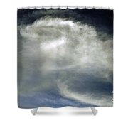 Rose Cloud Shower Curtain
