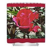 Rose Evening,oil Shower Curtain