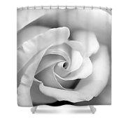 Rose Flower Black And White Monochrome Shower Curtain