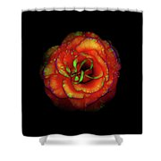 Rose Flower Color Abstract Shower Curtain