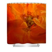 Rose Flower Orange Glowing Rose Giclee Baslee Troutman Shower Curtain