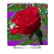 Rose For You Shower Curtain