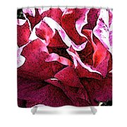 Rose Fresco Shower Curtain
