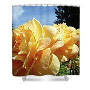 Rose Garden Yellow Peach Orange Roses Flowers 3 Botanical Art Baslee Troutman Shower Curtain