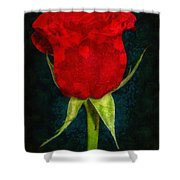 Rose - Id 16236-105012-4033 Shower Curtain