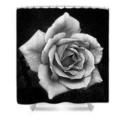Rose In Mono. #flower #flowers Shower Curtain