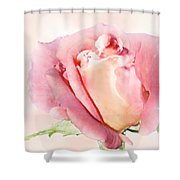 Rose Kiss Shower Curtain