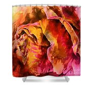 Rose Of Passion Shower Curtain
