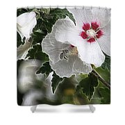 Rose Of Sharon And Bee Shower Curtain