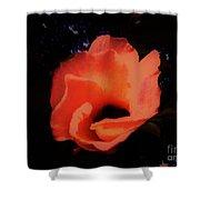 Rose Of Sharon Orange On Black Shower Curtain