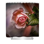 Rose On Paint #g5 Shower Curtain