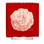 Rose On Red Shower Curtain