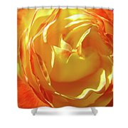 Rose Orange Yellow Roses Floral Art Print Nature Baslee Troutman Shower Curtain
