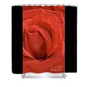 Rose-paintdaubs-2 Shower Curtain