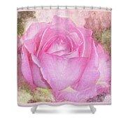 Enjoy A Rose Soft Pastel Shower Curtain