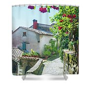 Rose Scented Pathway Shower Curtain