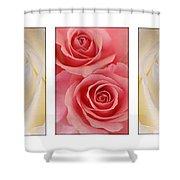 Rose Series  Shower Curtain