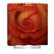 Rose Softness Shower Curtain
