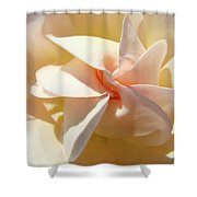 Rose Spiral Flower Art Prints Peach Rose Floral Baslee Troutman Shower Curtain