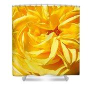 Rose Spiral Flower Garden Baslee Troutman Shower Curtain
