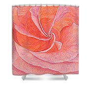 Rose Sprial Pink Fine Art Print Giclee Garden Flower Floral Botanical Love Romance Shower Curtain