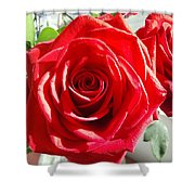 Rose Surprise Shower Curtain