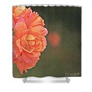 Rose Symphony Shower Curtain
