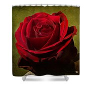 Rose Tapestry Shower Curtain