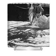 Rose Vase In Shadows Black And White Shower Curtain