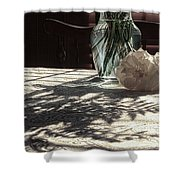 Rose Vase In Shadows Color Shower Curtain