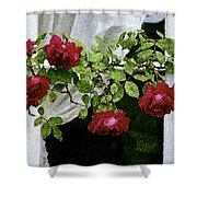 Rose Window Shower Curtain