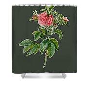 Rose101 Shower Curtain