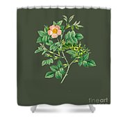Rose102 Shower Curtain