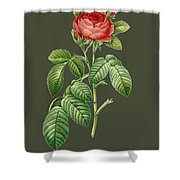 Rose103 Shower Curtain